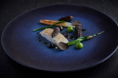 Turbot, Morrels and White Asparagus